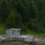Bonne Bay Boat Tour east arm 02