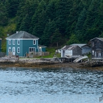 Bonne Bay Boat Tour east arm 03