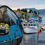 Bonne Bay Boat Tour fishing boats