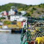 Petty Harbour Newfoundland - 04 Nets
