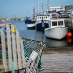 Petty Harbour Newfoundland - 03 fishing boats nets