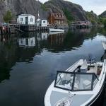 Quidi Vidi Harbour - 04
