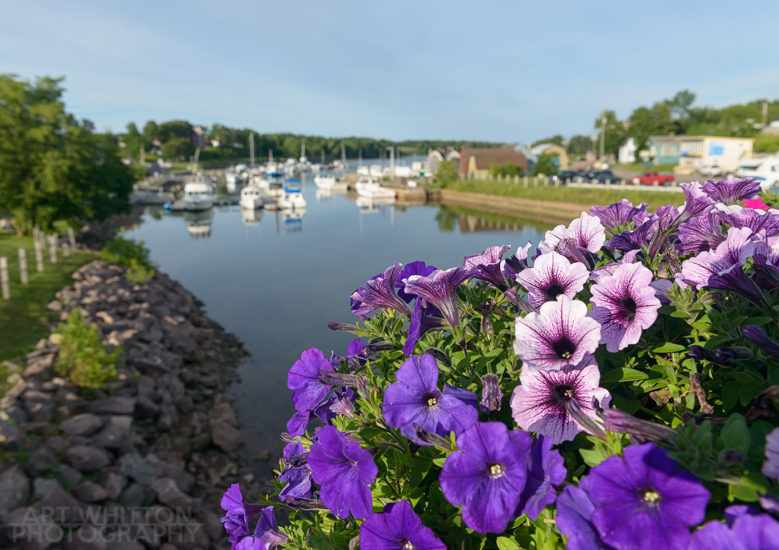 Montague PEI bridge flowers