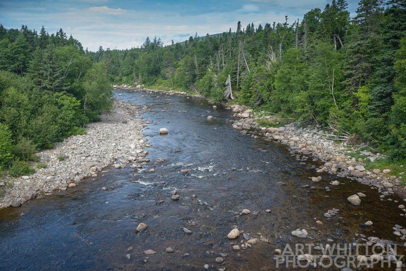 A brook in Newfoundland