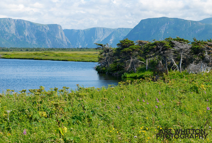 Western Brook Pond (in the background, not the small one in the front)