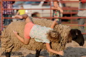 County Fair Photography - Mutton Busting