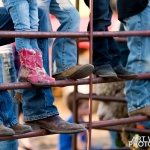 2018 Thayer County Fair - Mutton Busting
