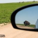 Photographing-Badlands-National-Park_18
