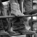 the-county-fair-boots