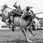 the-county-fair-rodeo