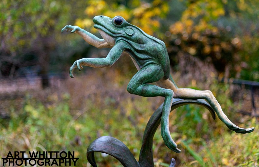 Frog Sculpture at National Zoo