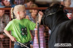County Fair Photography - 4H